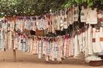 Korhogo cloth in trees