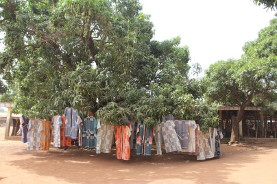 Korhogo cloth in trees
