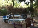 The Little Boabab garden