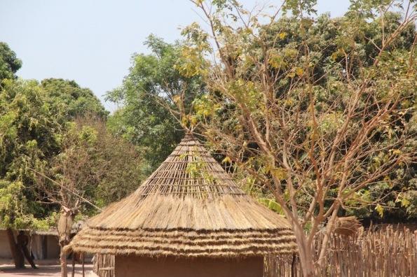African roof in progress