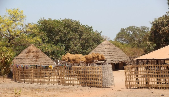 Roofing materials and huts, Africa