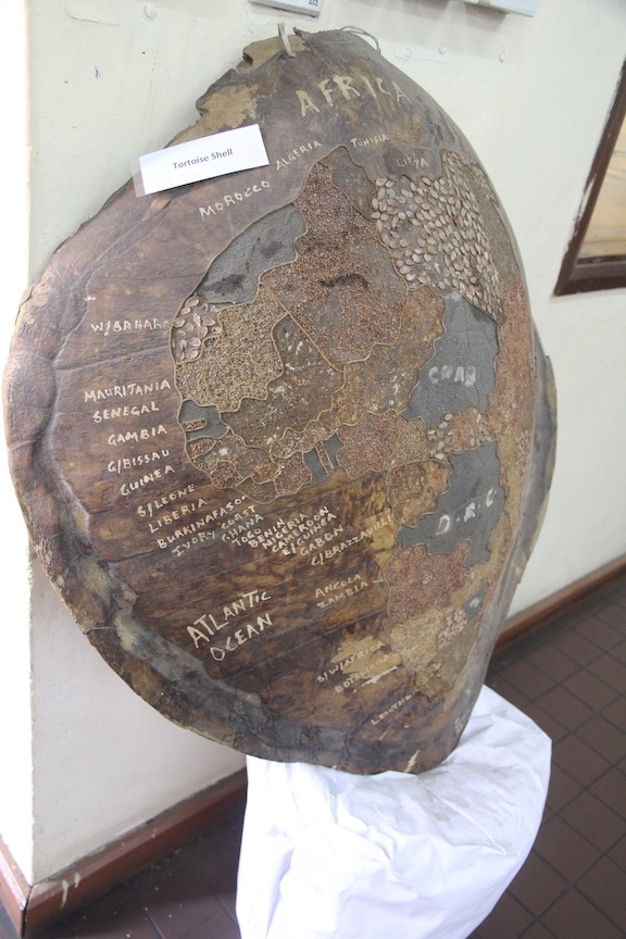 Map of Africa on tortoise shell