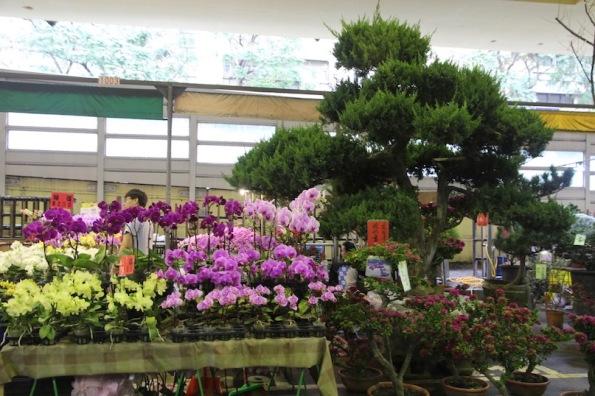 Flower market Taipei Taiwan