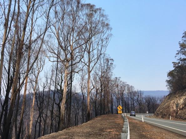 Kings Highway, NSW, Australia